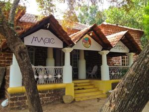 Photo of Magic Forest