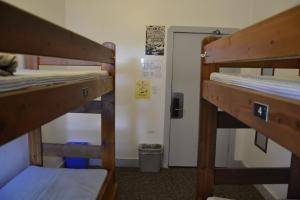 Bed in Small (4-5 Bed) Female Only Dorm Room