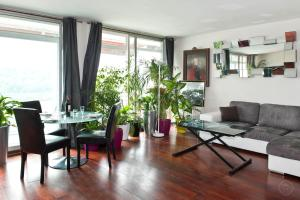 Paris apartments, Trocad�ro area