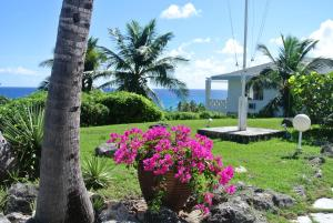 Photo of Stella Maris Resort Club