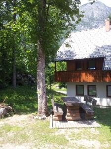 Photo of Apartments Lake Bohinj