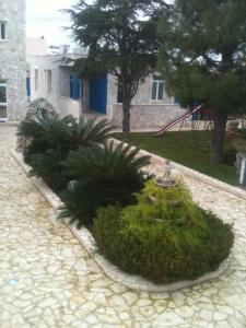 Bed and Breakfast Fly, Bed and Breakfasts  Bari - big - 35