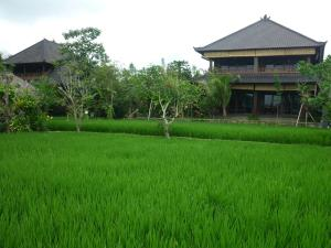 Photo of Bliss Ubud Spa & Bungalow