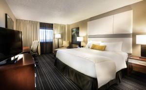 King Room - Executive Floor
