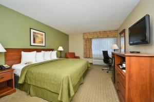 Quality Inn & Suites Near Fairgrounds & Ybor City, Hotels  Tampa - big - 19