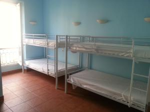 Photo of Hostel Harold's Backpackers