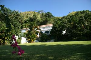 Moon Hill Jamaica