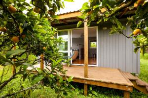 Relax a Lodge, Ostelli  Kerikeri - big - 33
