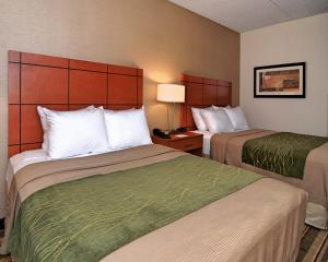 Queen Room with Two Queen Beds - Henry Ford Package and Transportation