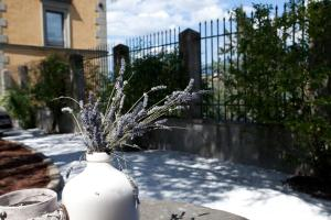 Relais Villa Belvedere, Apartments  Incisa in Valdarno - big - 115
