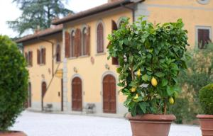 Relais Villa Belvedere, Apartments  Incisa in Valdarno - big - 113