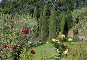 Relais Villa Belvedere, Apartments  Incisa in Valdarno - big - 124