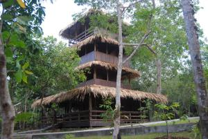 Amazon Antonio's Lodge