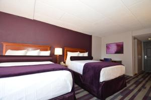 Double Room with Two Double Beds (3 Adults)