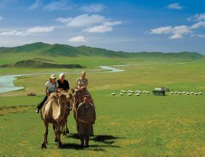 Steppe Nomads Eco Resort