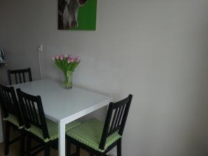 Slon Apartment