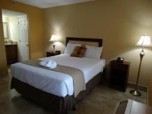 Junior Queen Suite with One Queen Bed