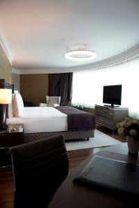 Panoramic Suite with Business Lounge Access