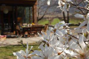 B&B Centro Arcangelo, Bed and breakfasts  Dro - big - 62