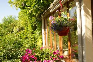 Le Moulin St Jean, Bed & Breakfasts  Loches - big - 27