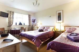 Wayside, Bed & Breakfasts  Norwich - big - 7