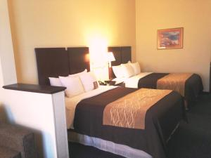 Queen Suite with Two Queen Beds - Non-Smoking/Pet Friendly