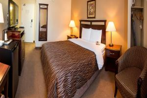 Chateau Regina Hotel and Suites, Hotels  Regina - big - 9