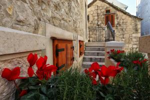 Photo of Guesthouse Mirula