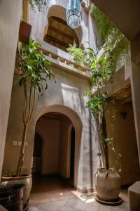 Dar Bladi, Bed and breakfasts  Ouarzazate - big - 27