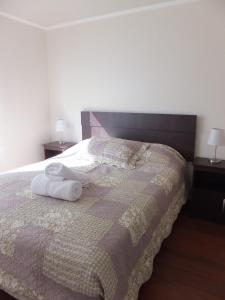 One-Bedroom Apartment-Tarapaca 1331
