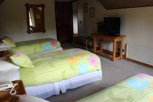 Triple Room 3-single beds