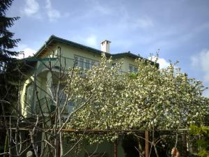 Photo of Guest House Slona