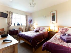 Wayside, Bed & Breakfasts  Norwich - big - 14