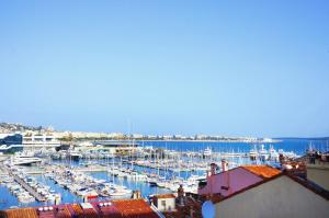 Charming Cannes Accommodation   Beach And Festival