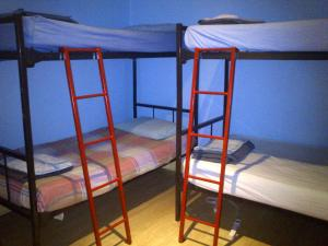 Bed in 6-Bed Male Dormitory Room with Shared Bathroom