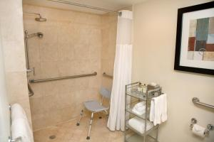 King Suite with Roll in Shower Water View