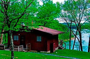 One-Bedroom Cabin - Lake View