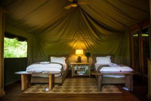 Luxury Twin Tent
