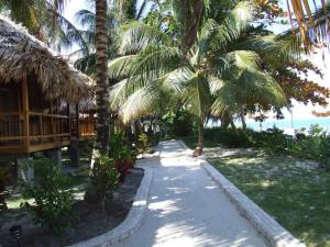 St. George's Caye Resort - 19 of 31