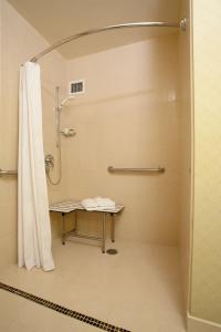 King Suite with Roll in Shower - Disability Access/ Non-Smoking