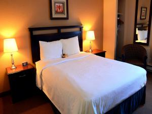 Chateau Regina Hotel and Suites, Hotels  Regina - big - 17
