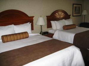 Queen Room with Two Queen Beds - Pet Friendly Smoking