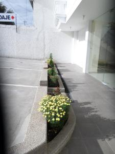 Ficoa Real Suites, Отели  Ambato - big - 32