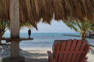 St. George's Caye Resort - 15 of 31