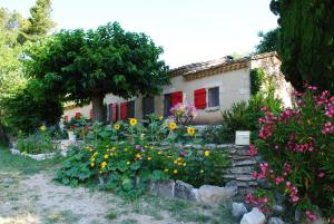 Photo of Un Petit Paradis Niché Au Coeur Des Alpilles