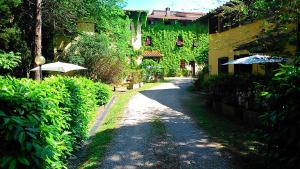Agriturismo Bellavista, Aparthotels  Incisa in Valdarno - big - 73
