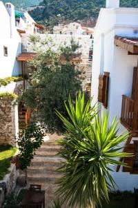 Courtyard, Hotels  Kalkan - big - 24
