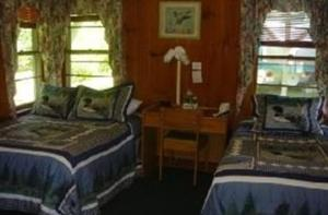 Deluxe Cabin with Two Double Beds