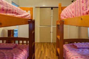 Single Bed in Mixed Dormitory Room 3