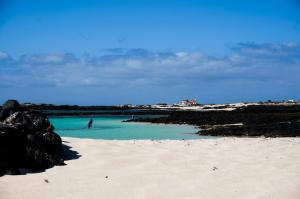 Photo of Cotillo Lagos